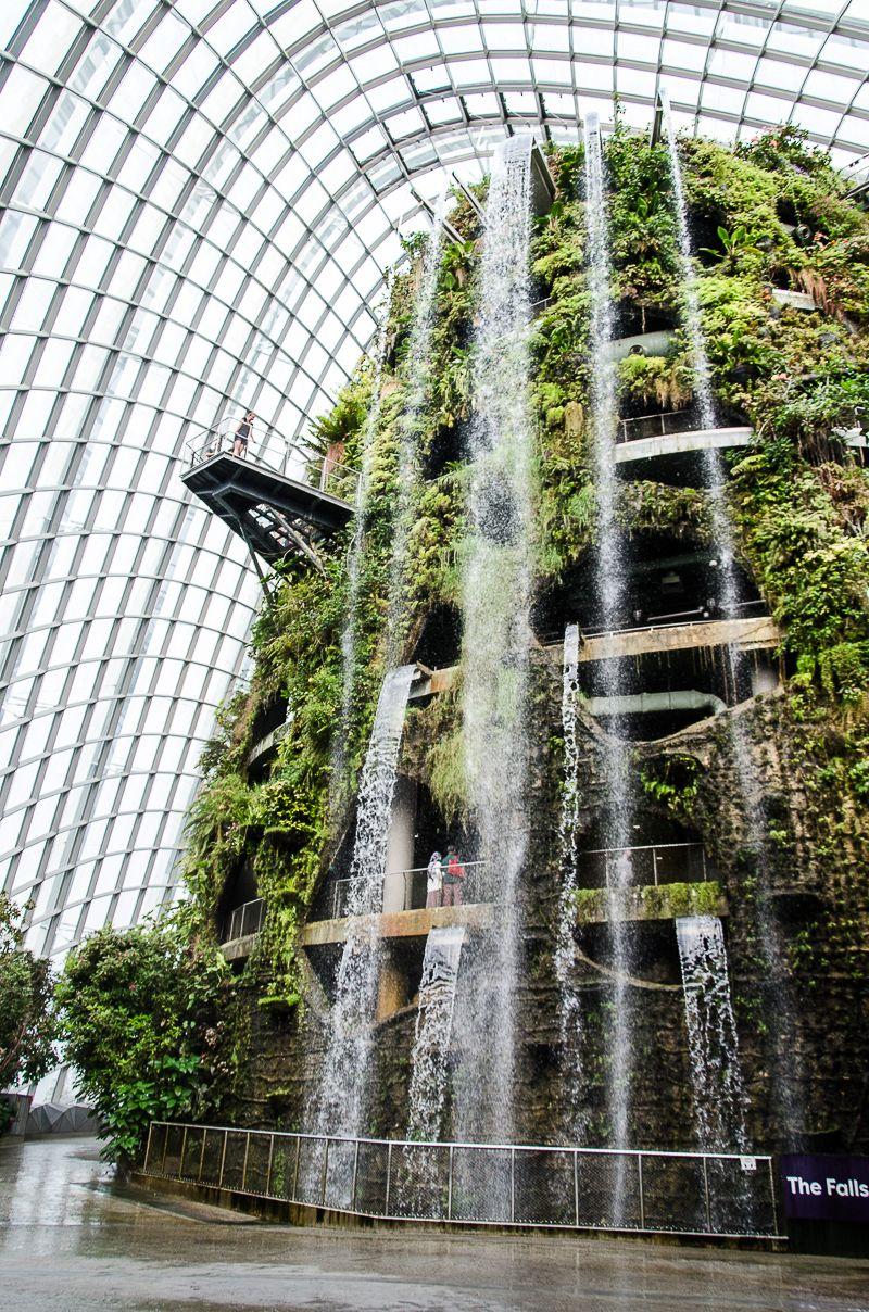 Cloud Forest, Сингапур