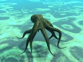 depositphotos_6600685-stock-photo-octopus.jpg