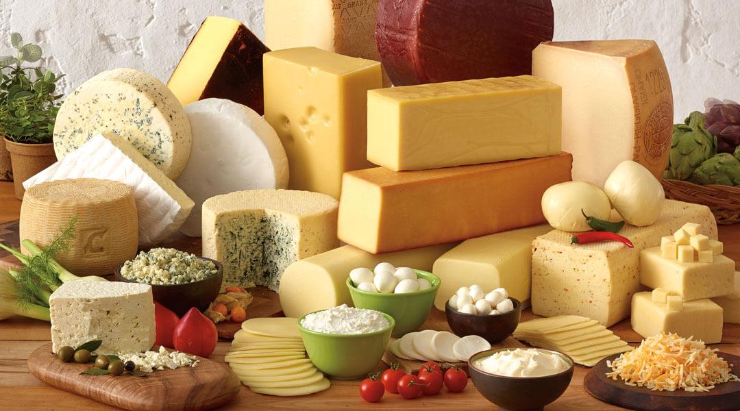 cheeseMain.jpg