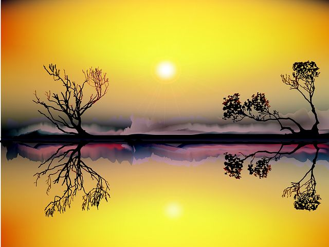 landscape-982178__480.jpg