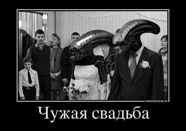 Картинки по запросу чужая свадьба