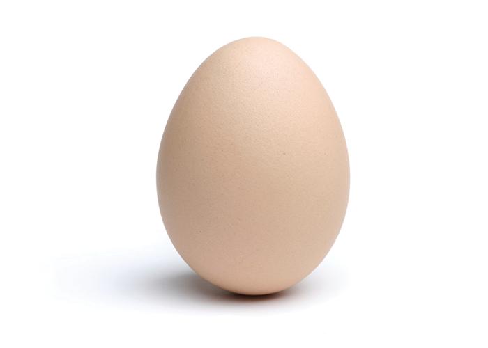 Яйцо картинки для детей, для мужчины