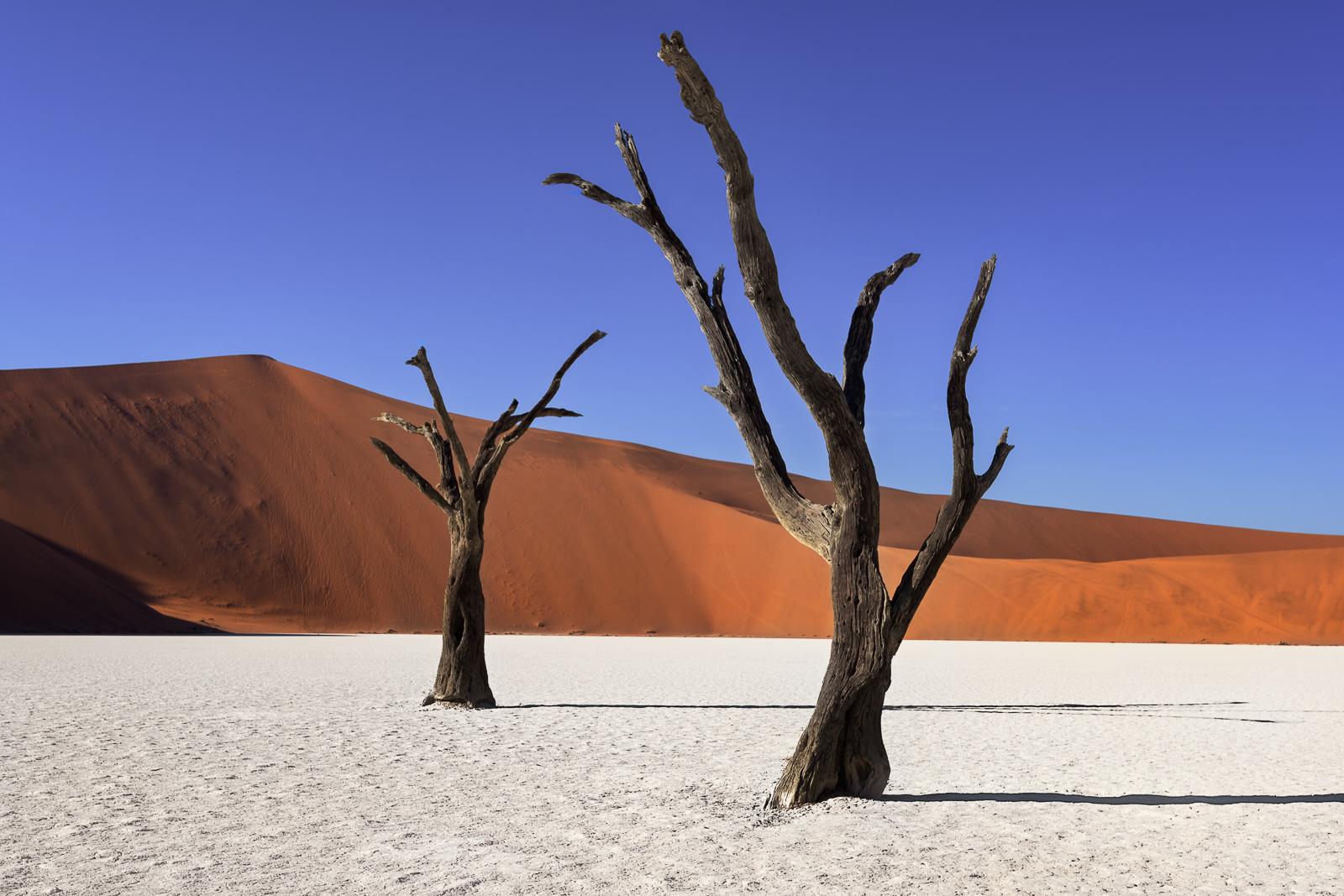 Namibia-7.jpg