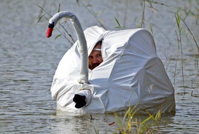 маскировка фотографа дикой природы.jpg