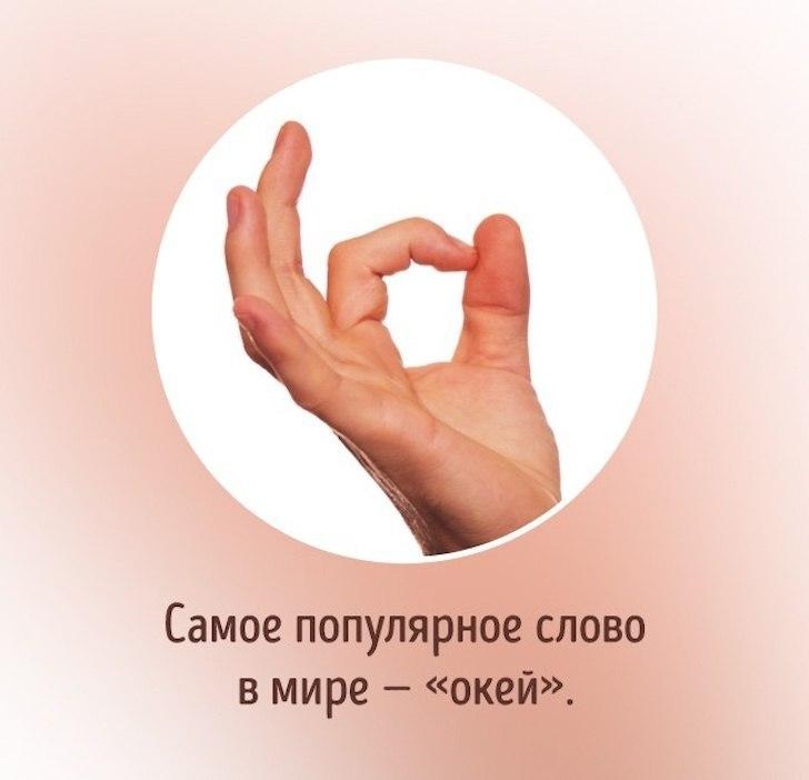 eaSJHM18RBI.jpg