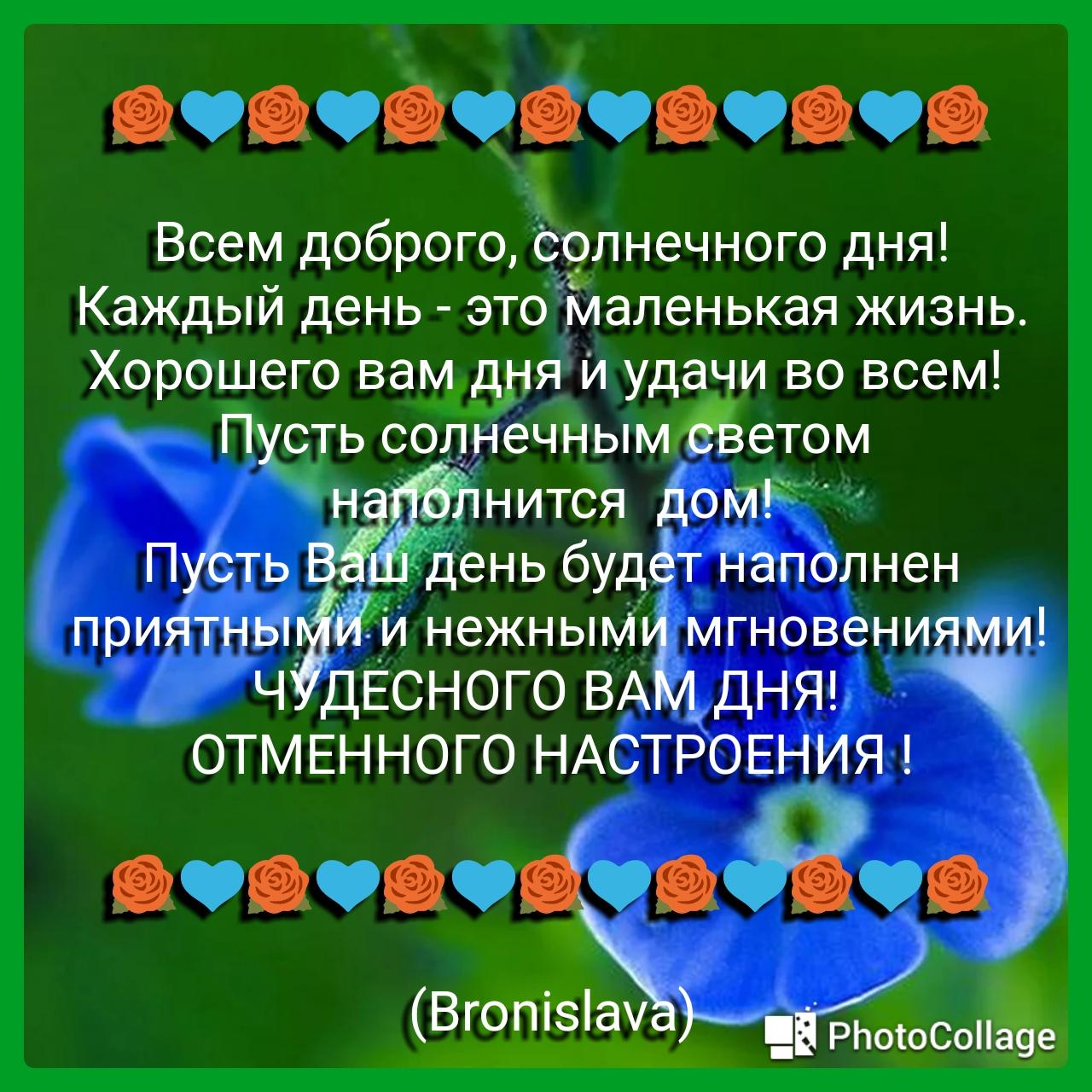 37732870_1.jpg