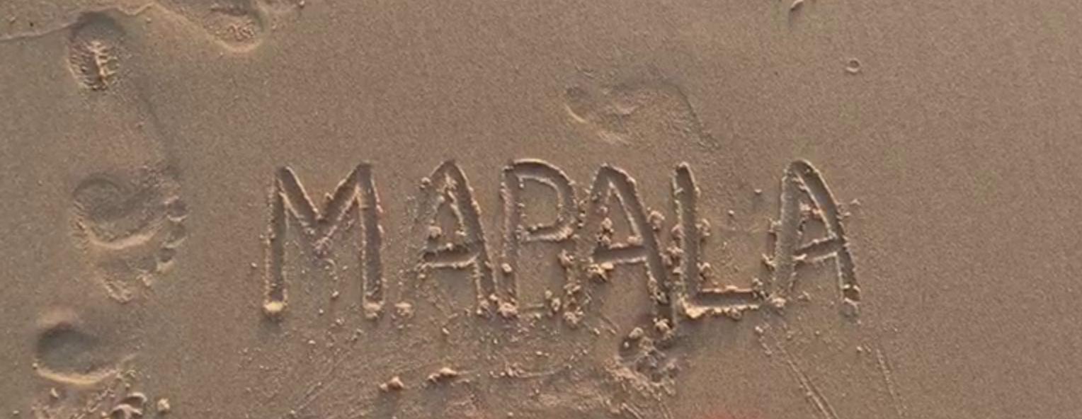 Реквием по мечте, Mapala.