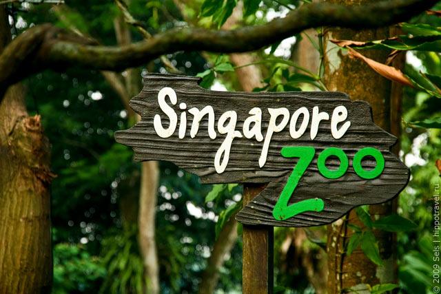 Зоопарк, Сингапур