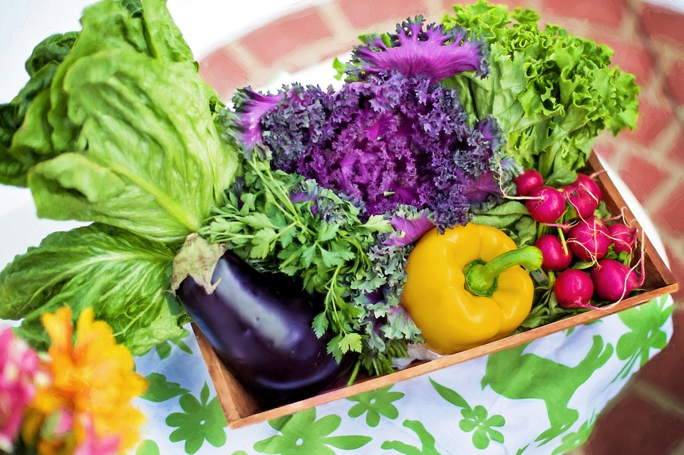vegetables-790022_960_720.jpg