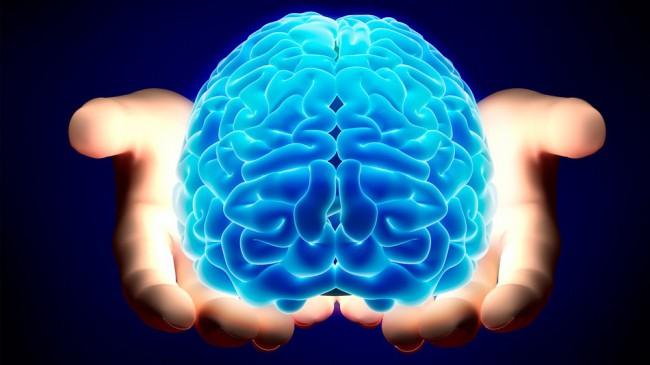 brain-650x365.jpg