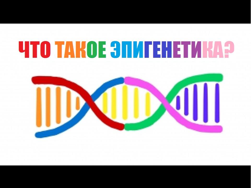 Картинки по запросу эпигенетика