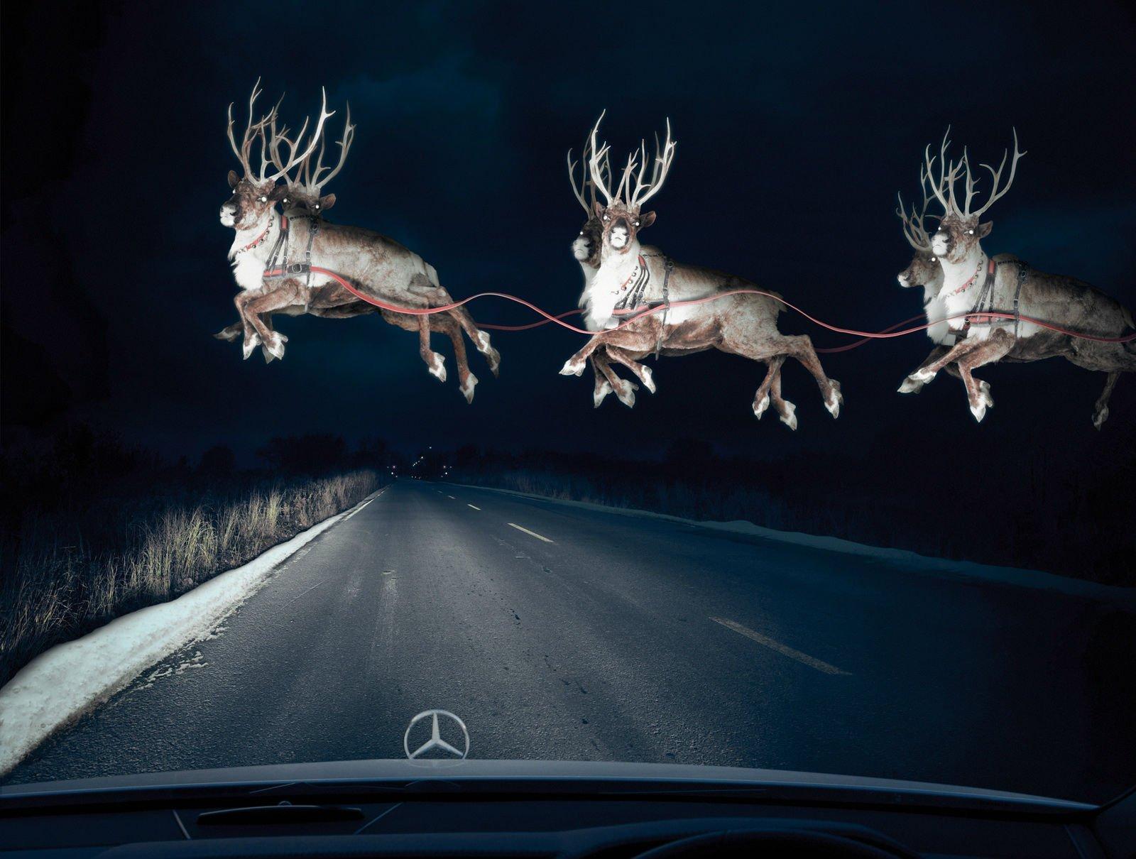 1600x1210_px_christmas_holiday_Reindeer-1318433.jpg