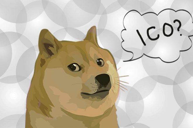 doge_ico.width-800-660x440[1].jpg