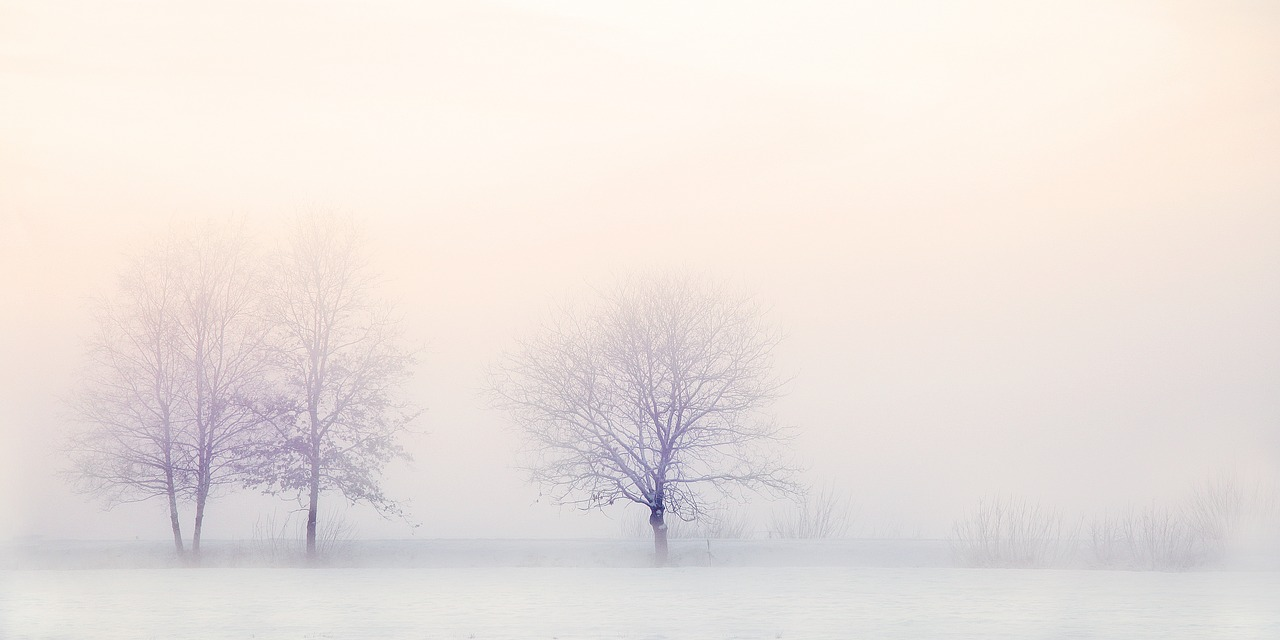winter-landscape-2571788_1280.jpg