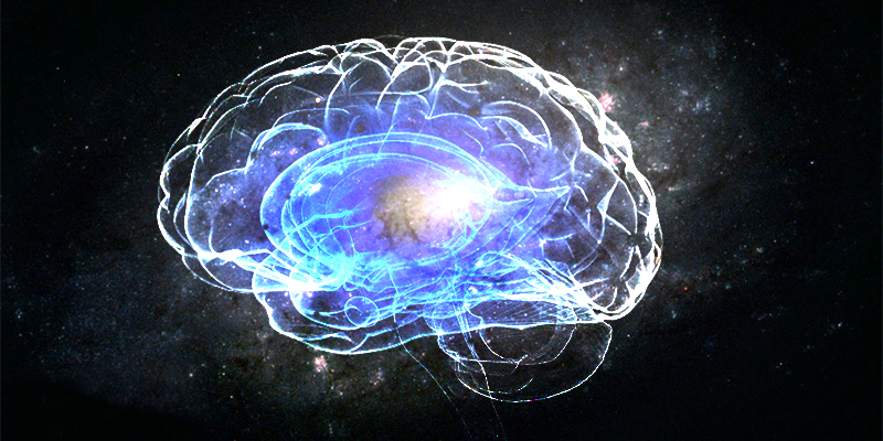 800x400-how-your-brain-is-universe.jpg