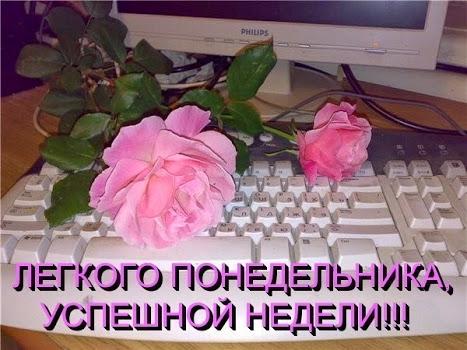 129235896_pic.jpg