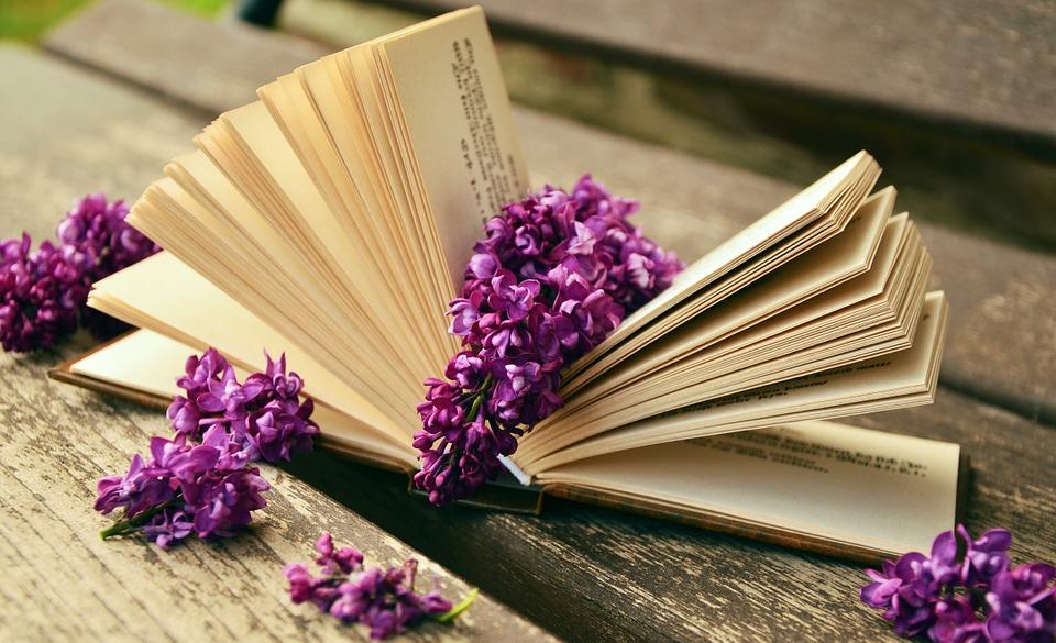 book-759873_960_720.jpg