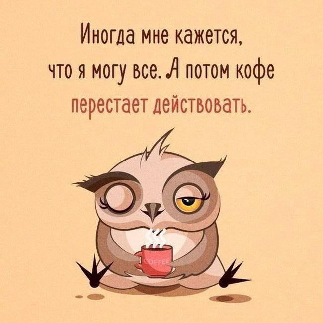Intellectual_humor_87.jpg