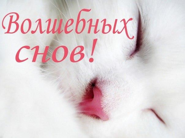 krasivye_teksty_pozhelanija_ljubimomu_parnju_spokojnoj_nochi.jpg