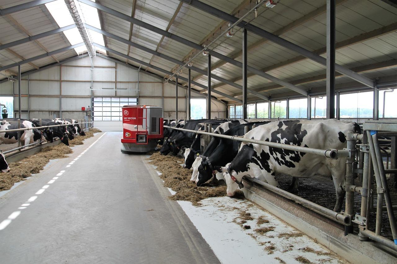 dairy-farm-2811887_1280.jpg