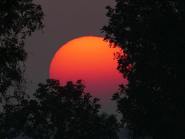 sunset-1370447__480.jpg