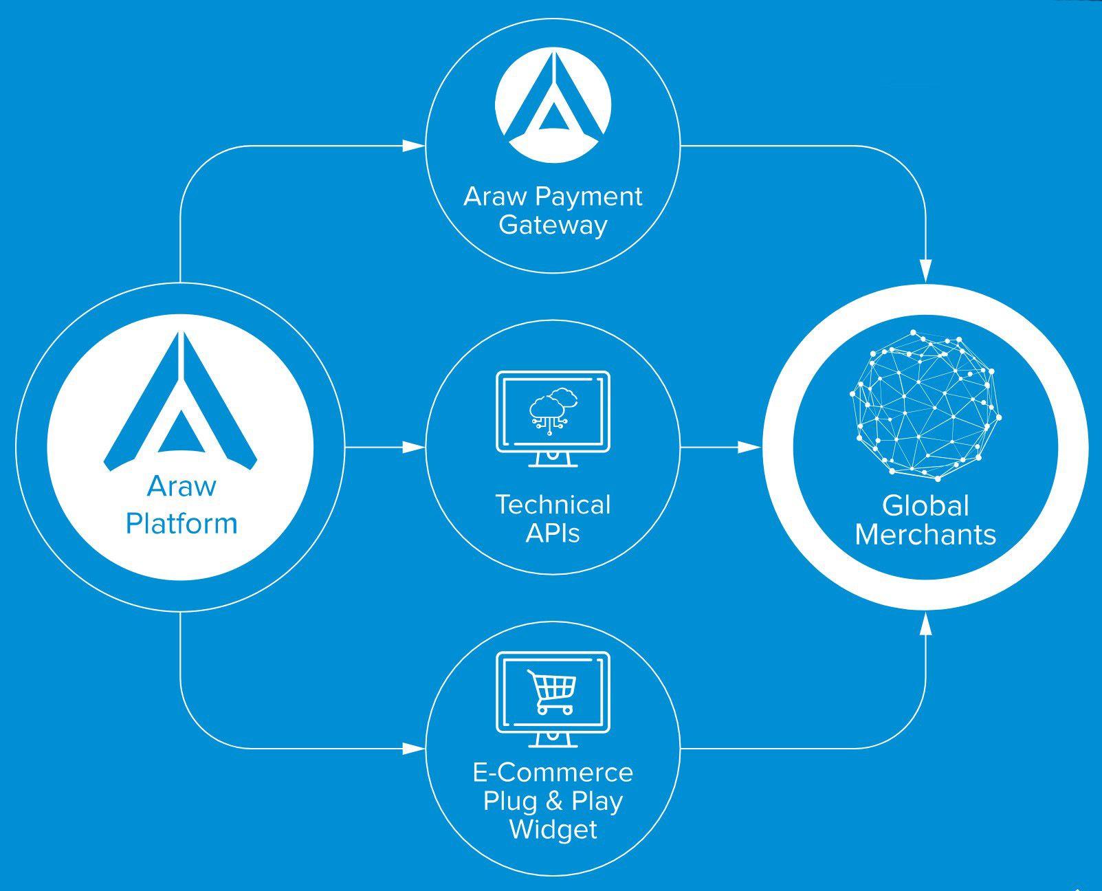 Open API Platform.jpg