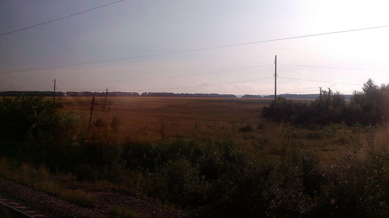 Двухсуточный фотомарафон. Продолжение: леса, поля, степи, города. День второй.