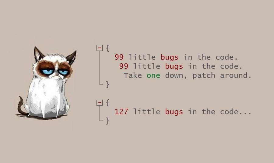 кот и баги.jpg