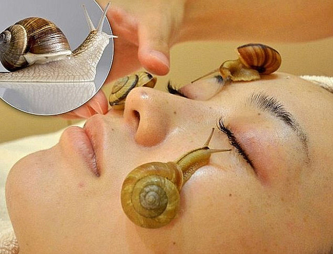 1KG-Pure-Snail-Slime-Mucus-Extract-1000ml-Same-As-Snail-Crawling-On-The-Face-Treatment-Beauty.jpg