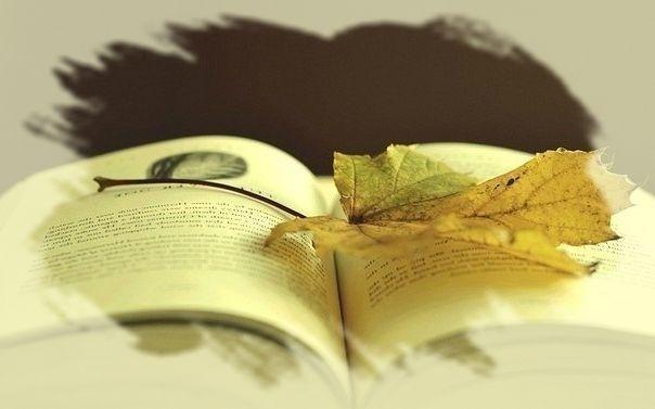 -книга-e1395656958327.jpg