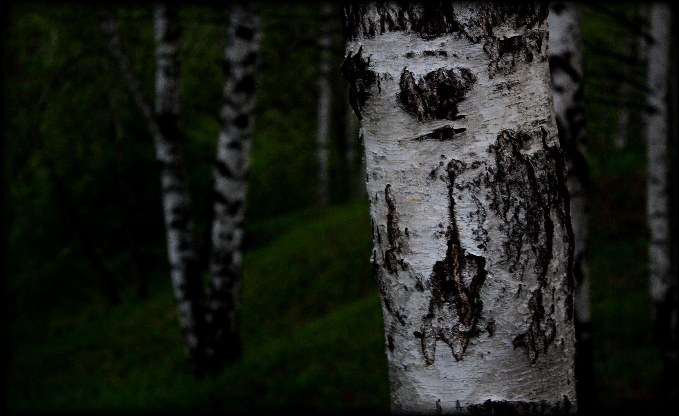 PicsArt_05-24-02.52.01.jpg