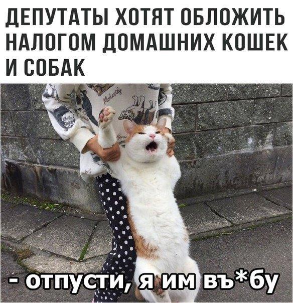kMHFQxYHybM.jpg