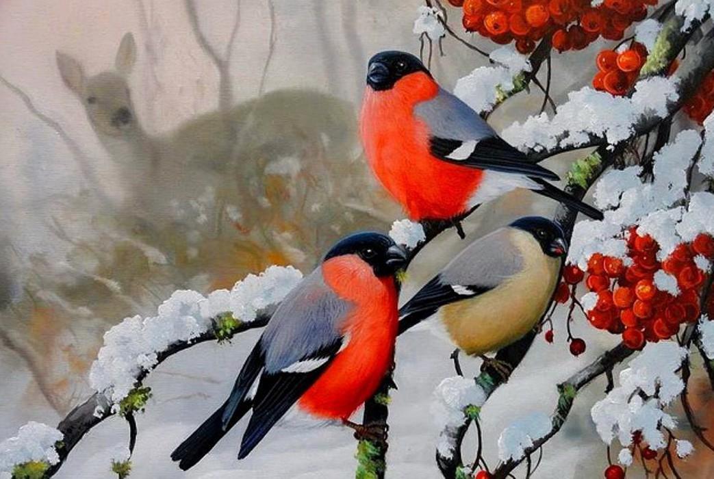 Картинка со снегирем на ветке