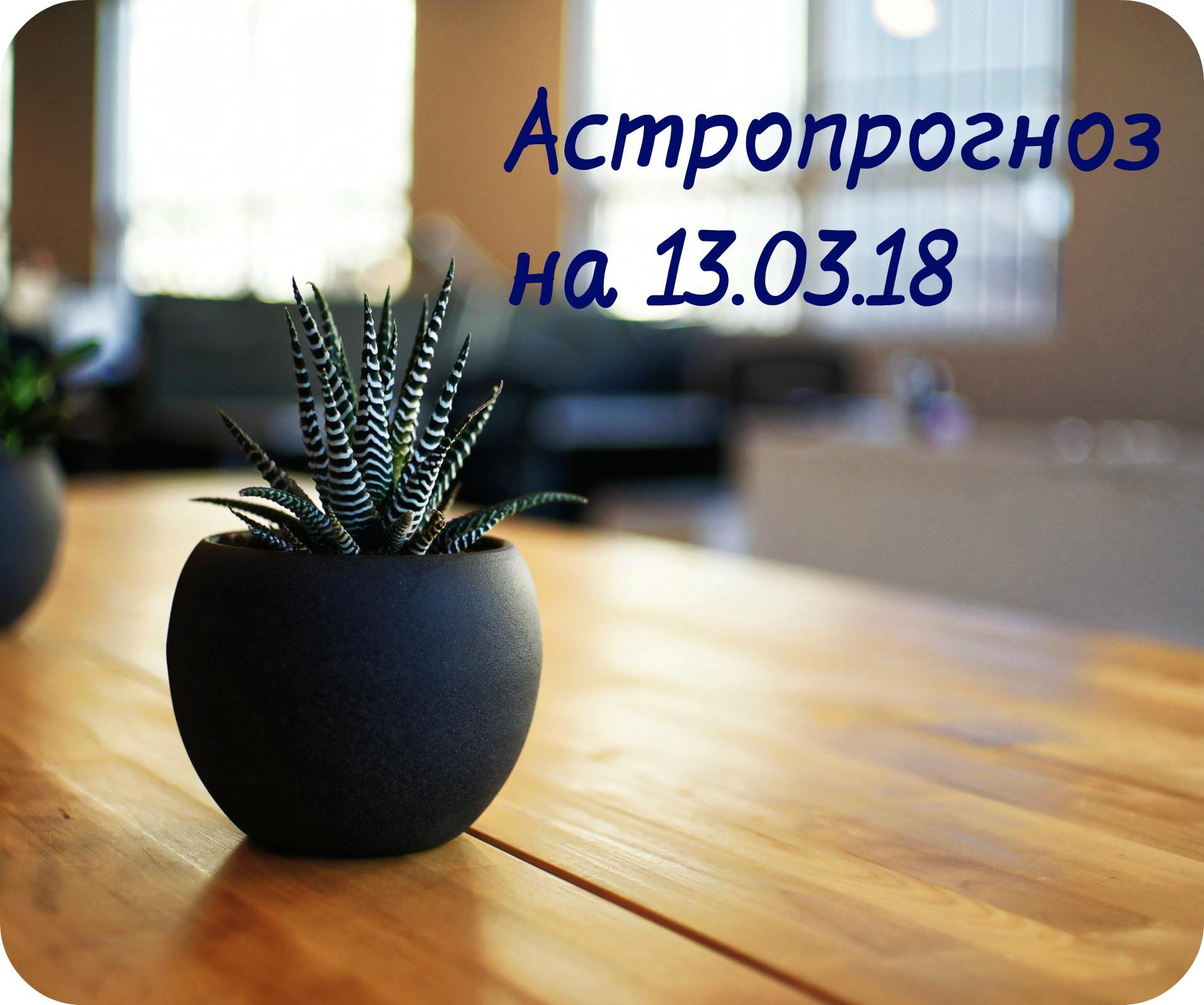 plant-in-a-vase.jpg
