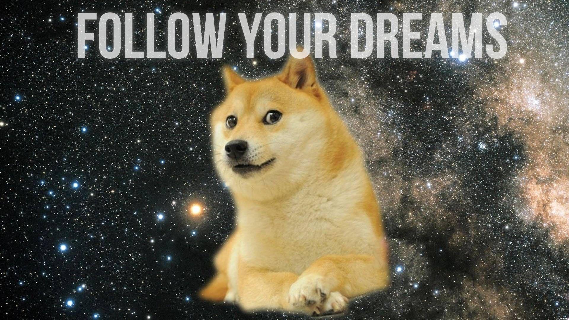 dog_mem.jpg
