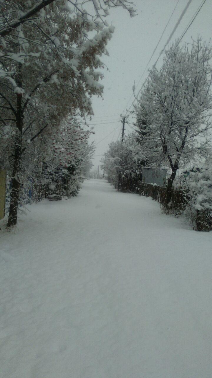 photo_2017-11-03_11-31-40.jpg