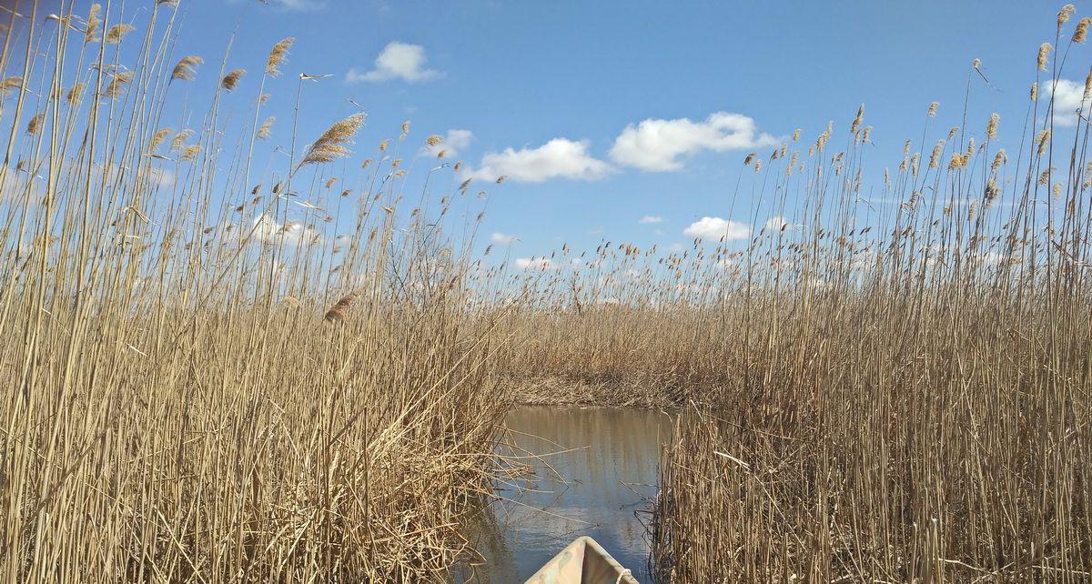 организация рыбалки на озере