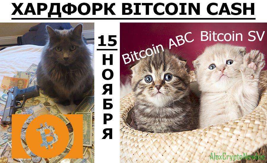 15 ноября хардфорк Bitcoin Cash