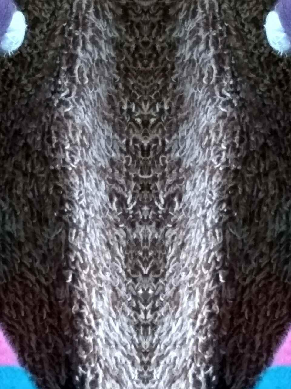image-0-02-04-dd1ebebcee13f5532f22cbb1281c03c907fb40898c68558ee02ed6d47e0abafe-V.jpg