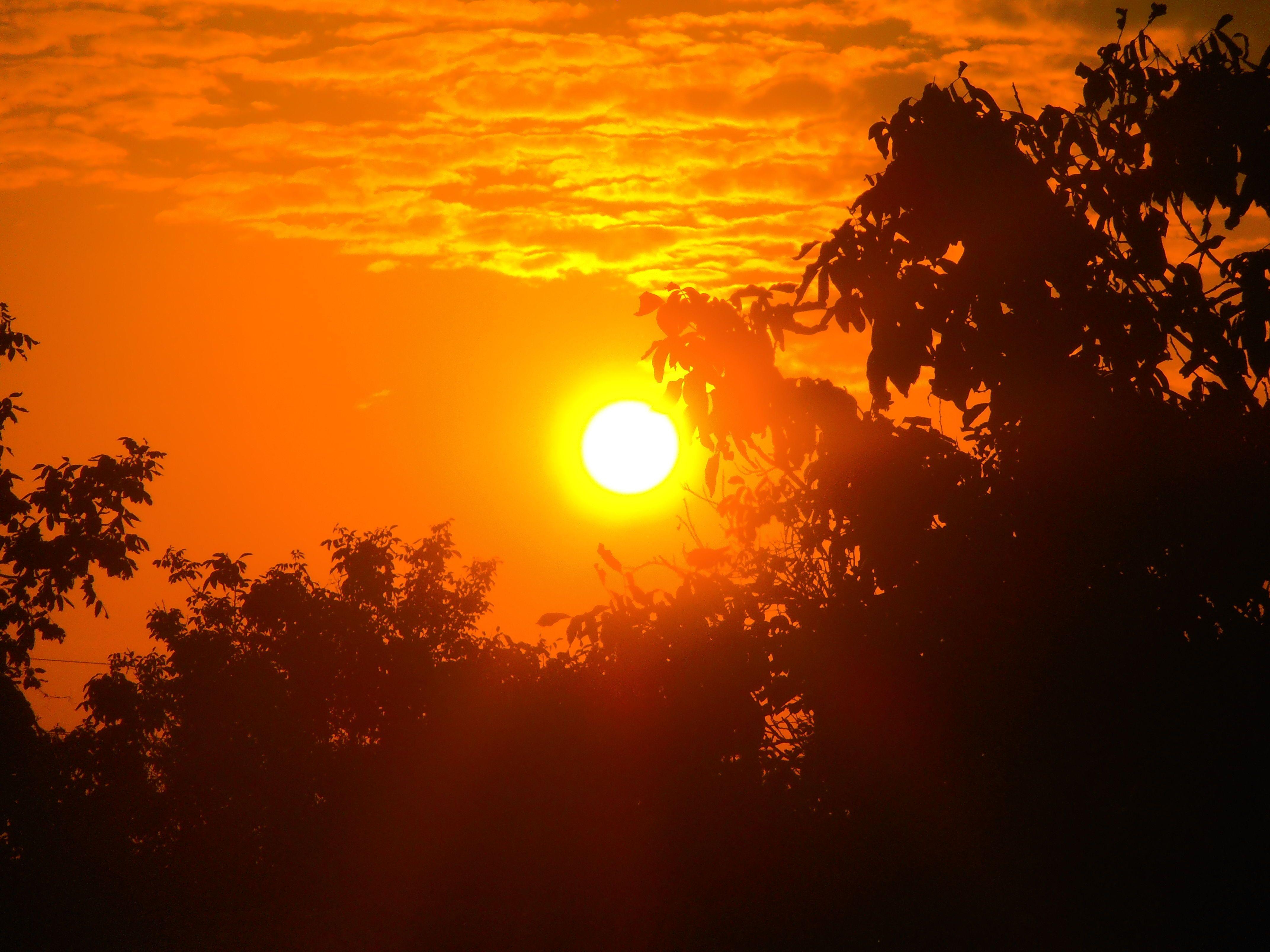 Картинки горячее солнце