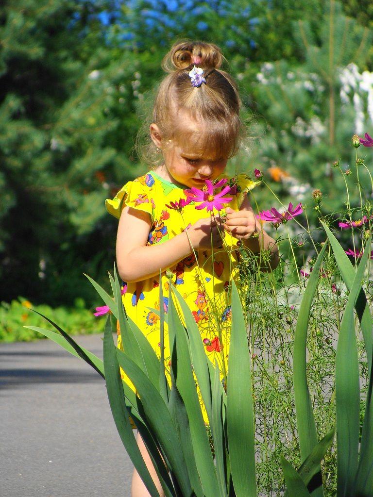 Для дедушки, картинки дети цветы нашей жизни