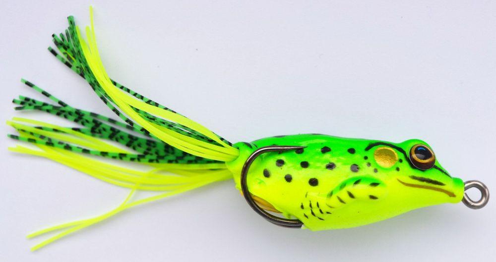 frog_slide_041-2.JPG