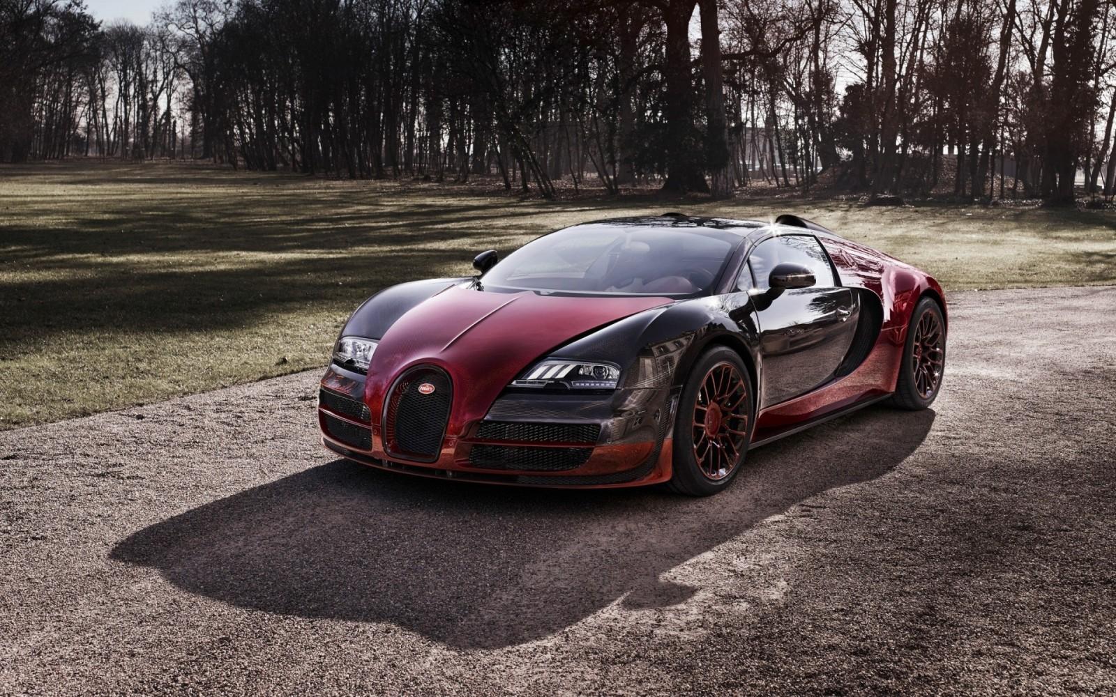 Bugatti_Veyron_16_4_Grand_Sport_Vitesse_La_Finale_Bugatti_Veyron_Grand_Sport_Vitesse_Bugatti-155444 (2).jpg