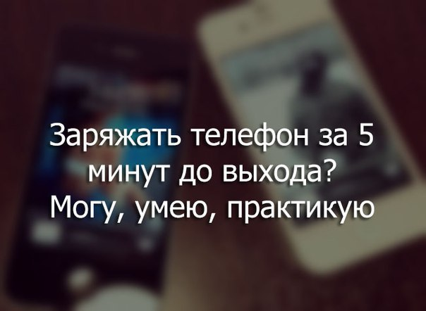 _SIVAhoabsY.jpg