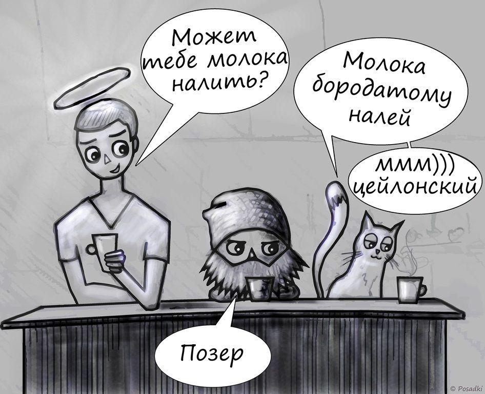 angel_domovoy_kot_posadki.jpg