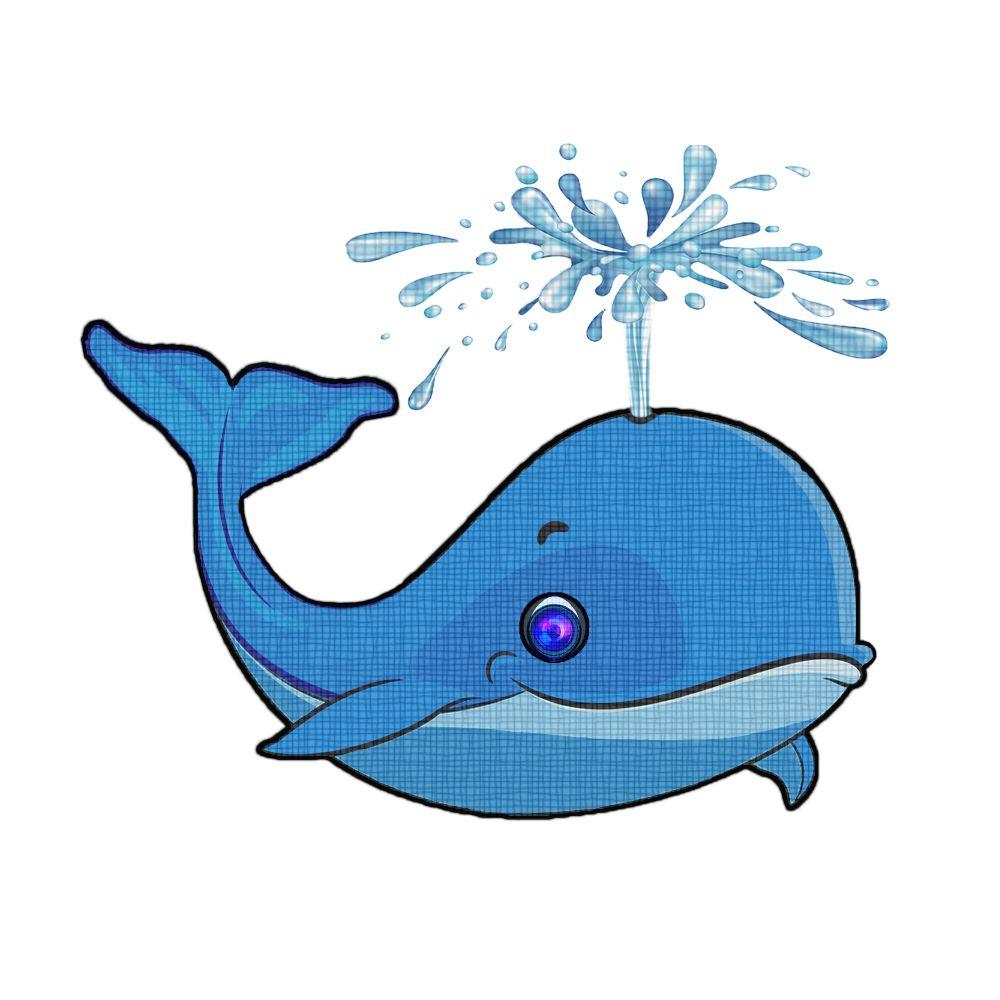 Веселая картинка кита