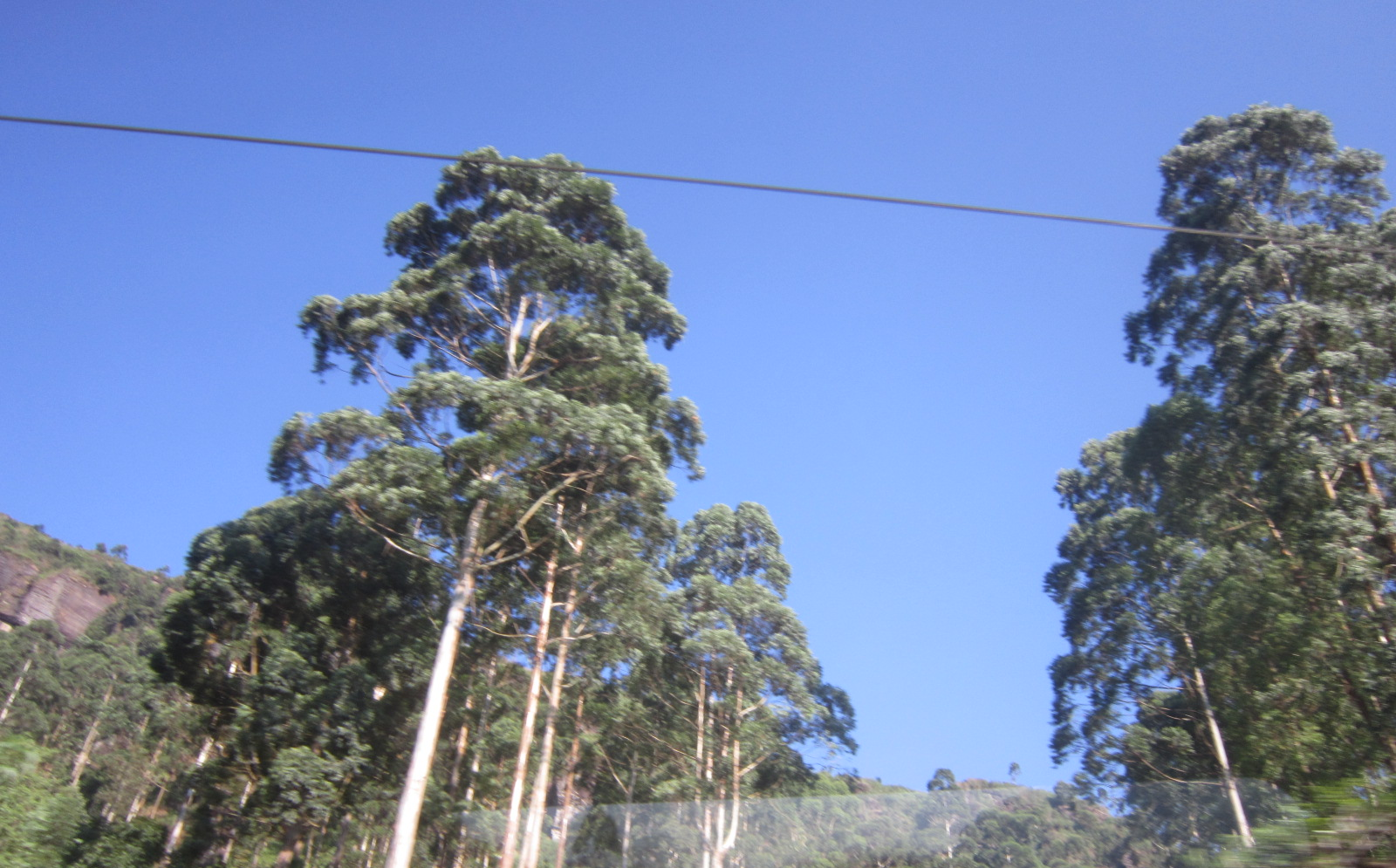 Image441.jpg