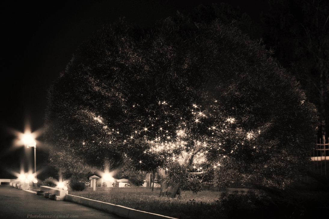 night_park_by_m_lorenz-d9d737i.jpg