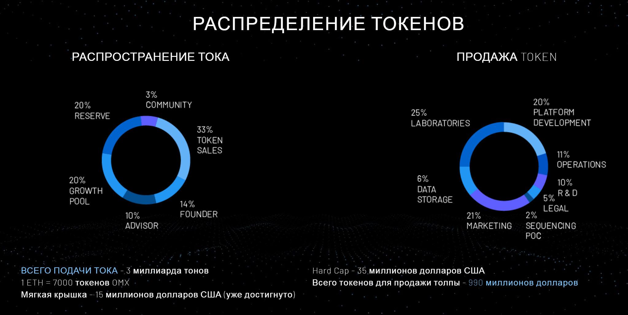 распределение токенов.jpg