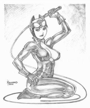 catwoman_by_ryankinnaird.jpg